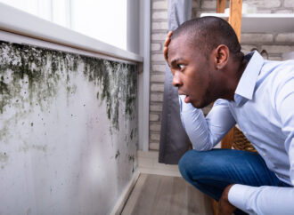 How to Sell a House With Mildew and Mold?